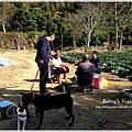 9耀婆山草莓園 (6).JPG