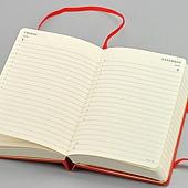 Stationery_Moleskine_Diary_2012_DAILY_P_07_big.jpg