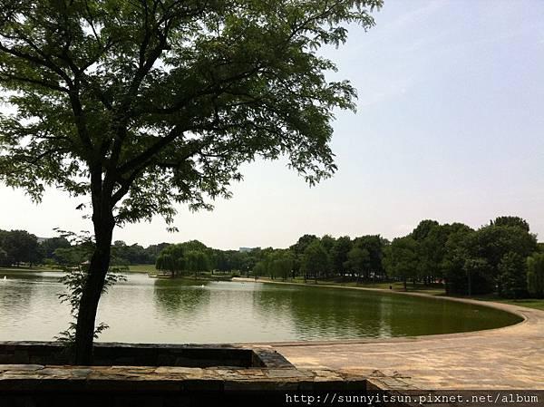 constitution garden pond 1.jpg