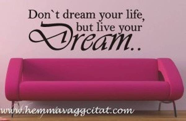 image-live your dream