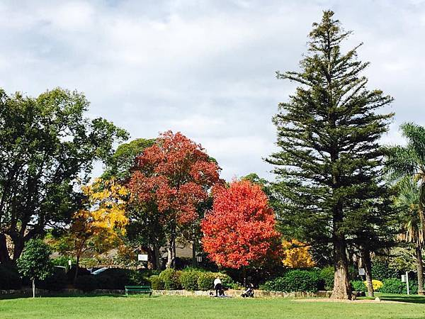 sydney autumn 17