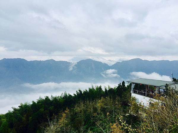 銀杏森林 步道 (48)_調整大小.JPG