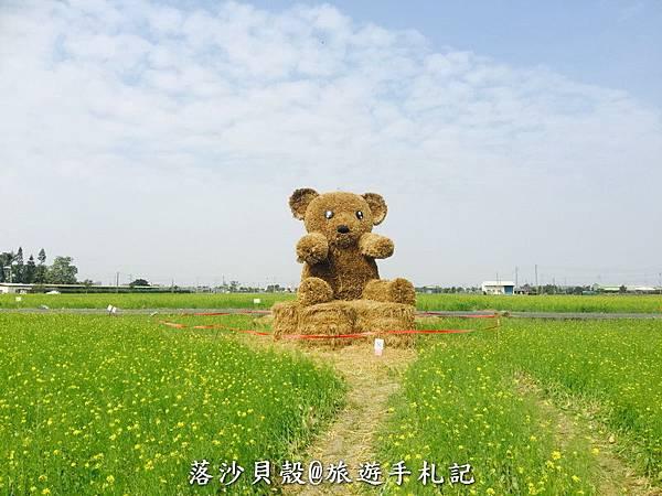 嘉義_太保_花海節 活動期間1.22~1 (20).jpeg