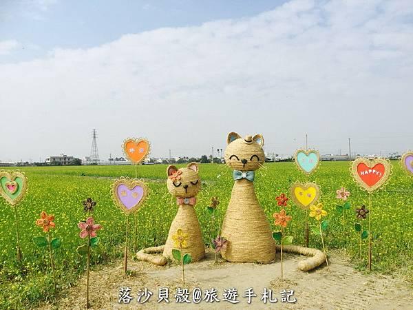 嘉義_太保_花海節 活動期間1.22~1 (28).jpeg