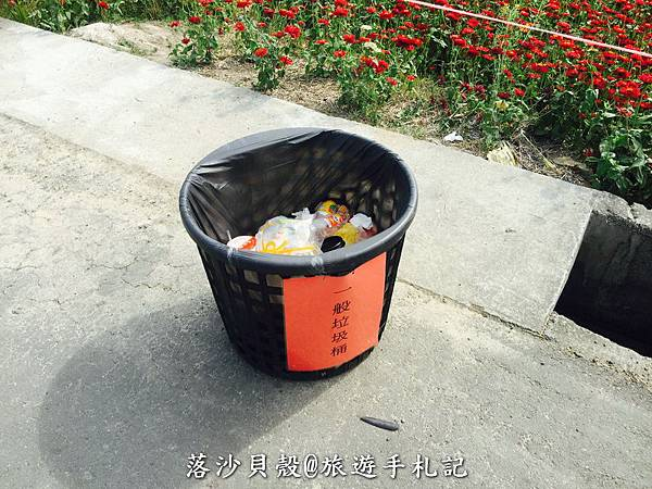 嘉義_太保_花海節 活動期間1.22~1 (59).jpeg