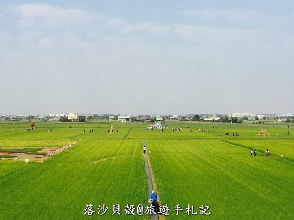 嘉義_太保_花海節 活動期間1.22~1 (76).jpeg