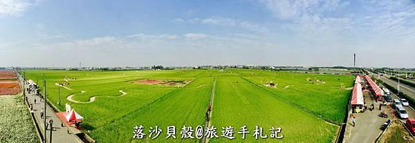 嘉義_太保_花海節 活動期間1.22~1 (80).jpeg