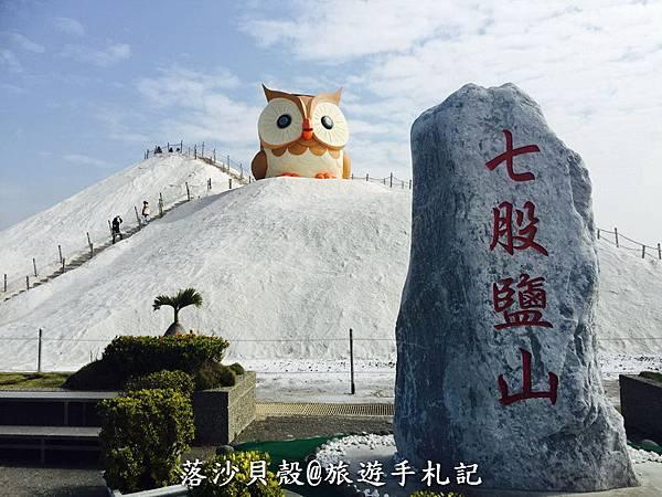 台南_七股_鹽山出現巨大貓頭鷹 (21).jpeg