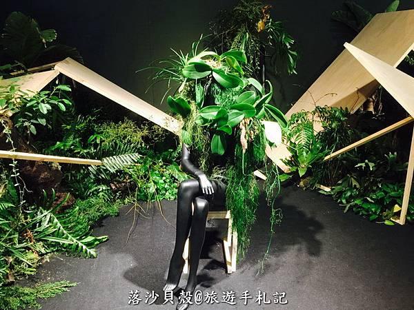 台南_後壁_2017台灣國際蘭花展 (151).jpg