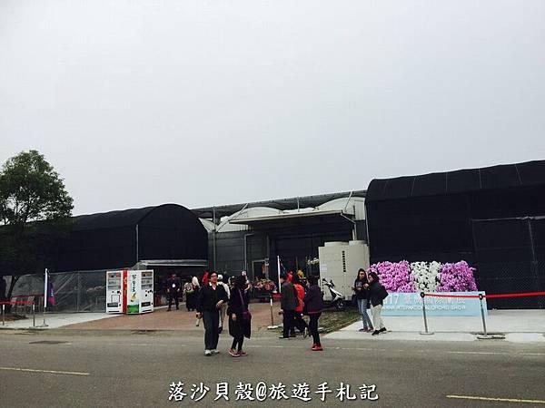 台南_後壁_2017台灣國際蘭花展 (229).jpg