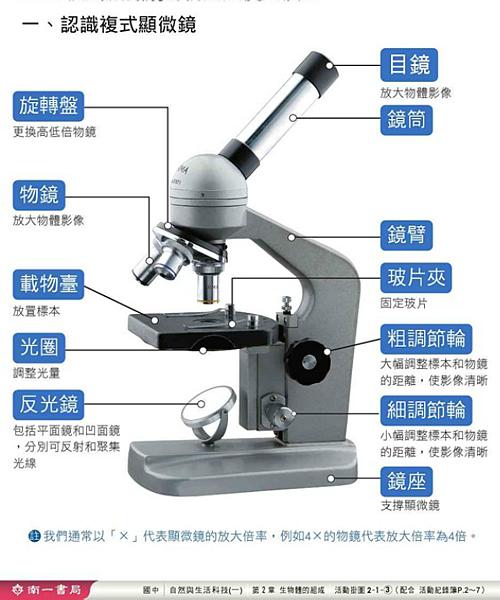 認識複式顯微鏡.png