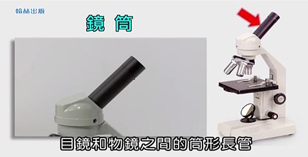 顯微鏡3.png