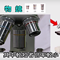 顯微鏡6.png