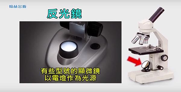 顯微鏡11.png