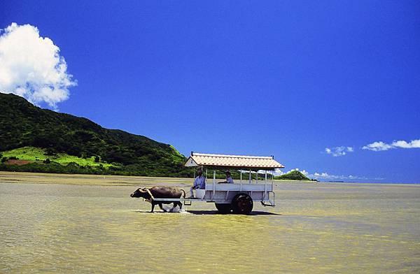 沖繩旅遊│沖繩琉球│沖繩石垣島‧和昇清風會館-景點介紹