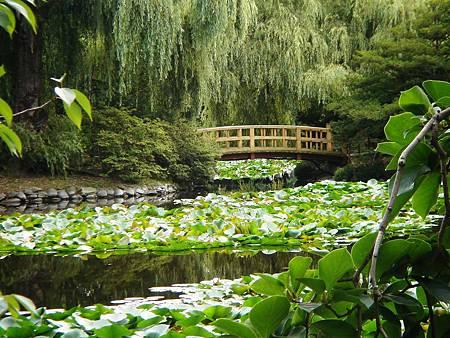 北海道風景 039