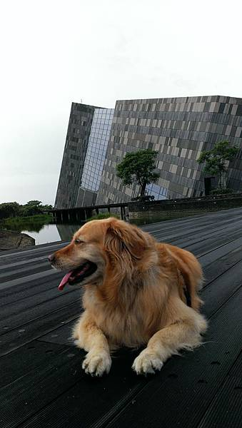 Boopee花東旅遊