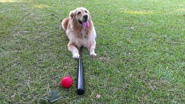 Boopee打棒球