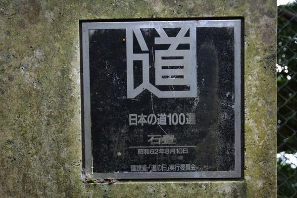 1545f7e887b651.jpg
