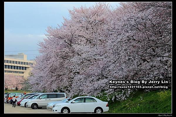 20160401岡山旭川 (17).jpg