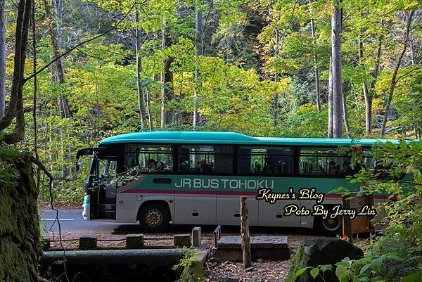 CW4A4305.JPG
