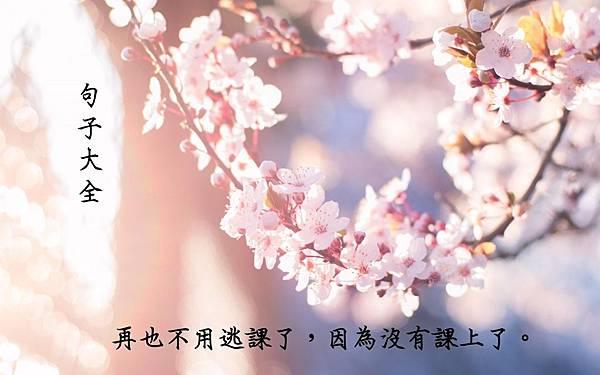 逃課—致青春.jpg