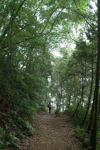 這次走不一樣的路徑,由橫嶺山自然步道出發.JPG