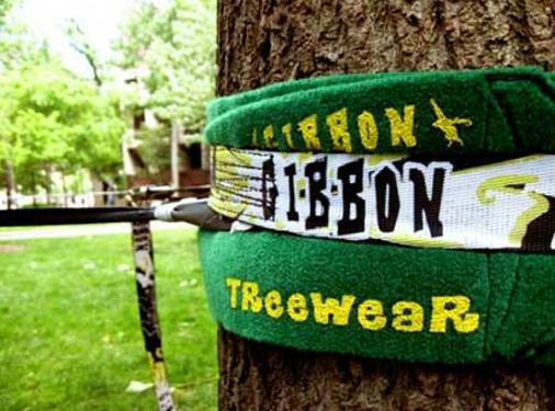 樹木包護套