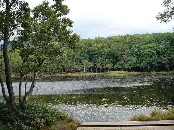 043_知床五湖.JPG