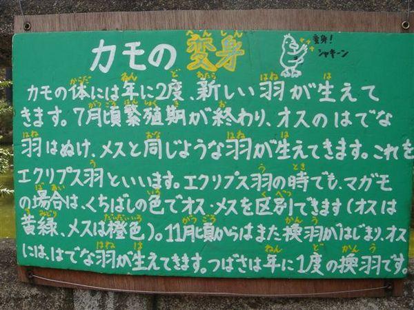 009_變身.JPG