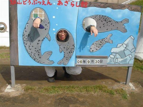 023_史上最憂鬱海豹.JPG