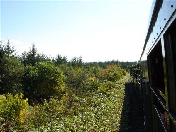 058_火車快飛.JPG