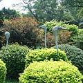 030_鴕鳥.JPG