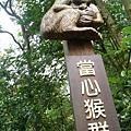 天母古道032.JPG