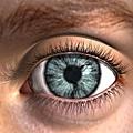 eye001.jpg