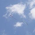 072_風箏.JPG