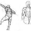 20110707_人體的背部結構組合練習2.jpg