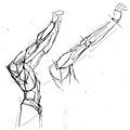 20110625_肩胛骨手臂肌肉連接作業1.jpg