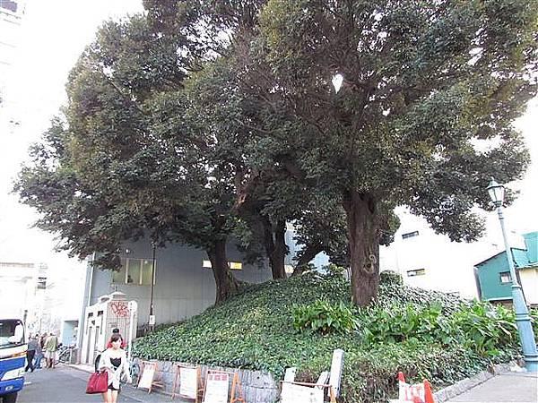 190_万松寺通.JPG