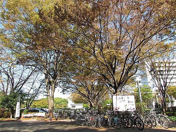 004_市役所站.JPG