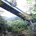 橋.jpg