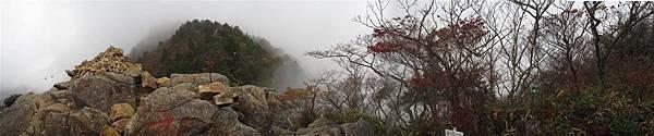 楓林3.jpg