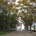 012_白川公園.JPG