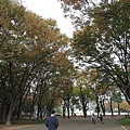 005_白川公園.JPG