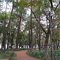 015_白川公園.JPG