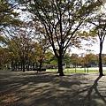 037_白川公園.JPG