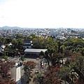 登犬山城1.jpg
