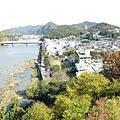 登犬山城2.jpg