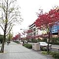 016_NagoyaDome前.JPG