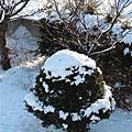 003_積雪.JPG